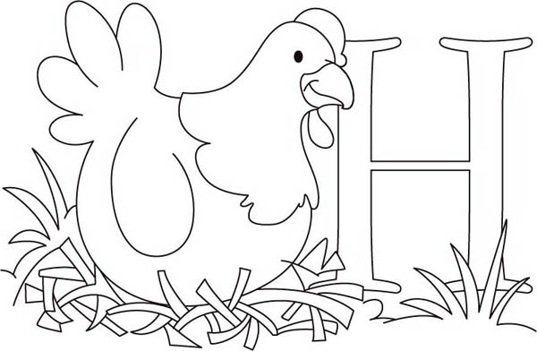 Alphabet H Is For Hen Coloring Page