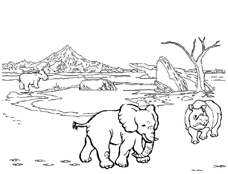 African Safari Meet Rhino and Elephant Coloring Page African