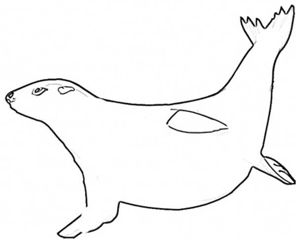 Seal Dive into Deep Sea Coloring Page Seal Dive into Deep Sea