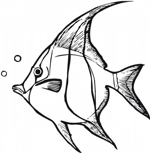 Angel Fish Making Bubbles Coloring Page