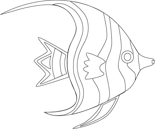 angel fish outline coloring page coloring sky