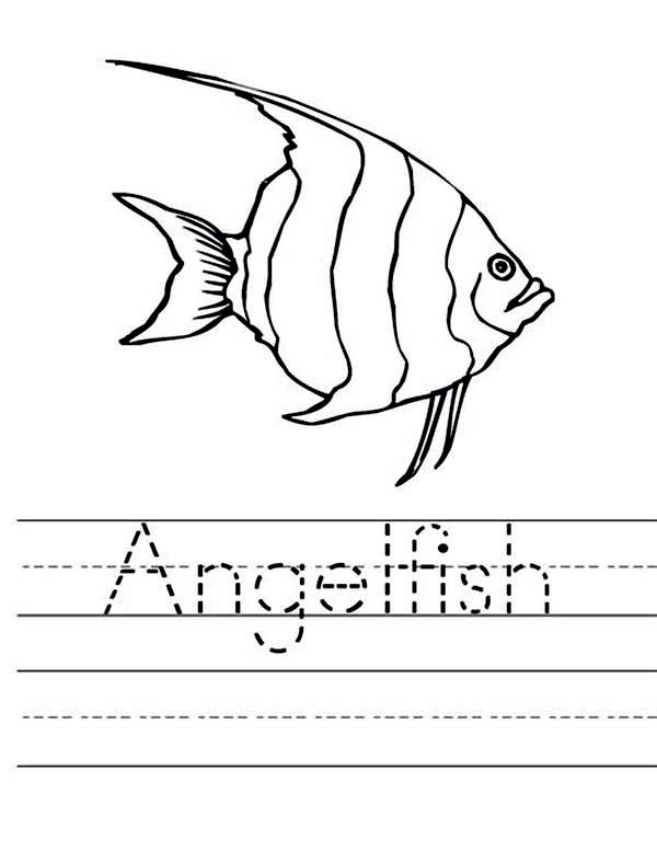 Angel Fish Worksheet Coloring Page Coloring Sky