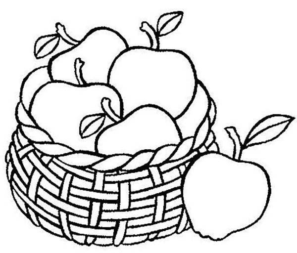 Apple Basket Coloring Page PageFull Size Image