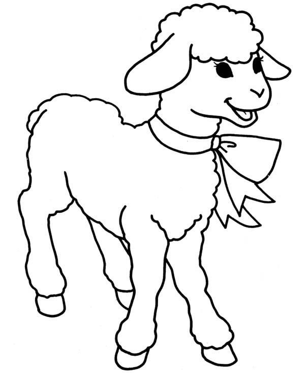 Easter Lamb Wear a Ribbon Coloring Page | Coloring Sky