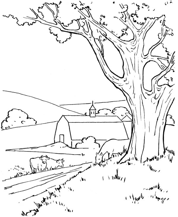 Farm At The Village Coloring Page