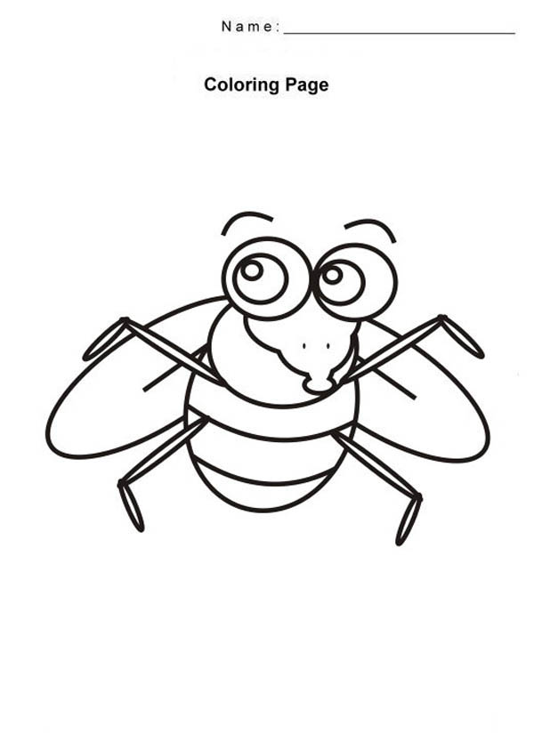 Free Fly Coloring Pages Fly Coloring Page For Kids