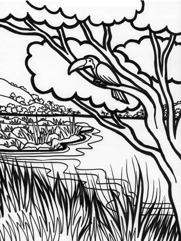 Forest River Coloring Page Coloring Sky