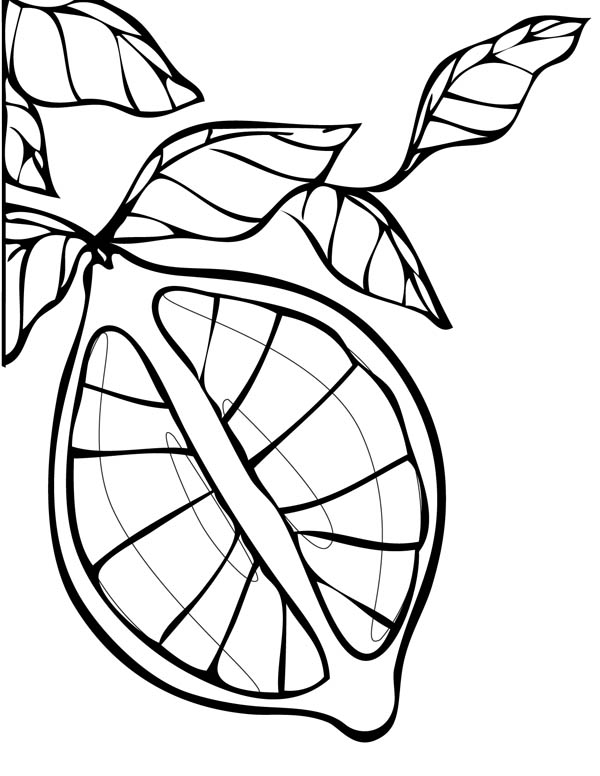 Lemon coloring page coloring sky for Lemon coloring page