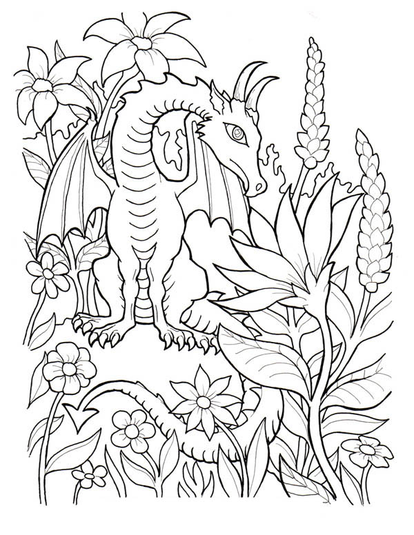 fantasy dragon coloring pages images - photo#25