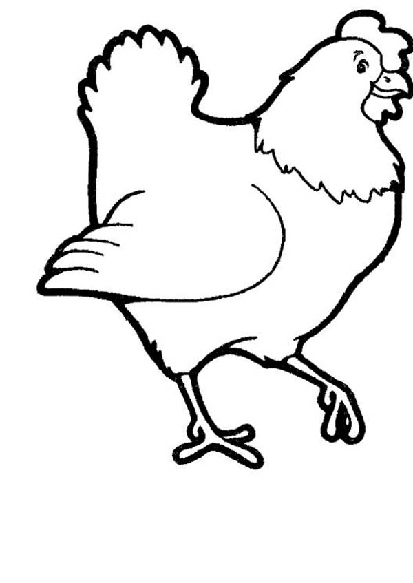 Picture Of Farm Animal Hen Coloring Page