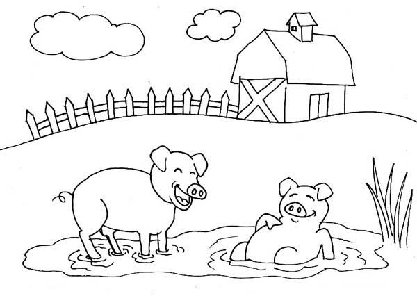 Pig Mud Bath Farm Coloring Page
