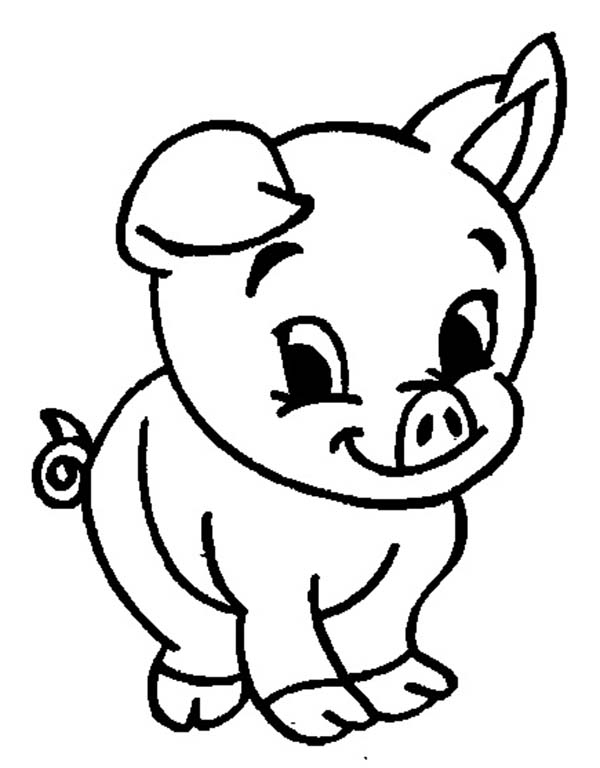 Adorable Baby Pig Coloring Page
