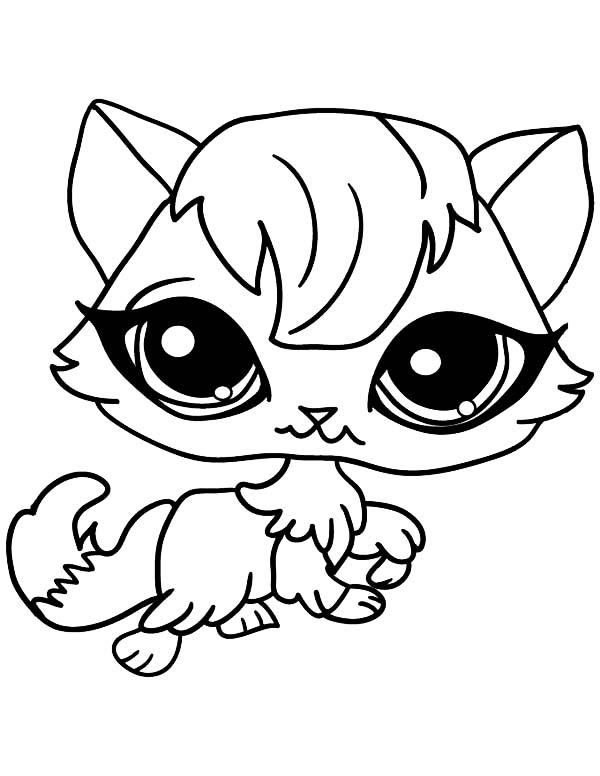 Coloring Pages Of Animals With Big Eyes : Big eyed female cat for pet coloring page sky