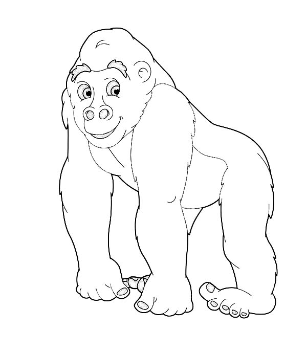 Going Safari With Gorilla Coloring Page