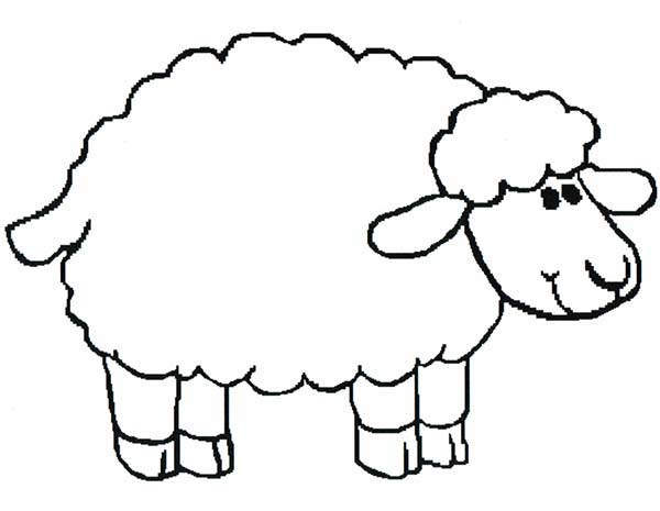 Introducing Sheep To Kindergarten Kids Coloring Page