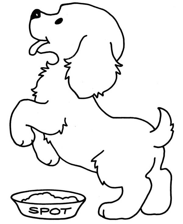 Pet Dog Is Hungry Coloring Page