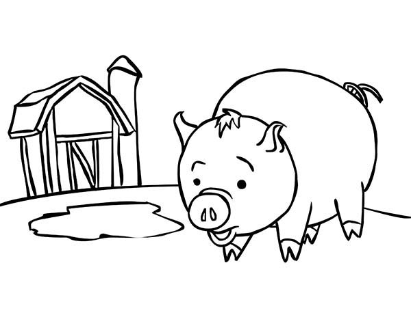 Pig Near Barn Coloring Page