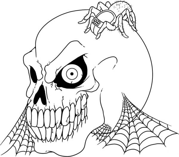 Scary Skull and Tarantula Coloring Page | Coloring Sky