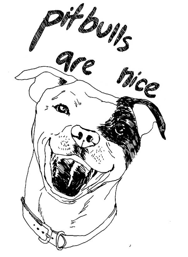 Terrifying Pitbull Dog Coloring Page Coloring Sky