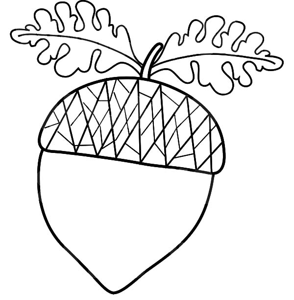 oak leaf coloring pages - photo #19