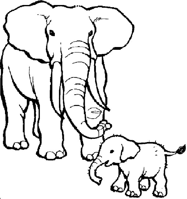 How To Draw African Elephant Coloring Pages