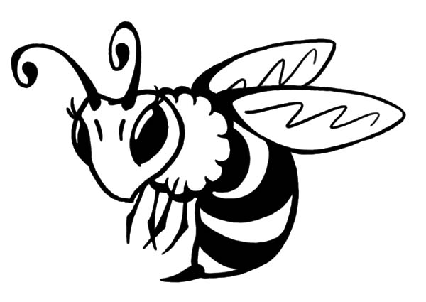 Honey Bee Coloring Page Home Sketch Coloring Page