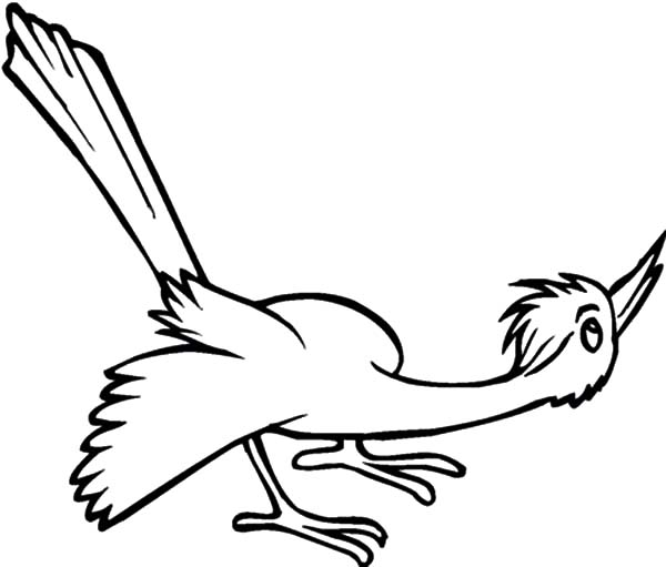 Cuckoo Bird Look Curious To Something Coloring Pages