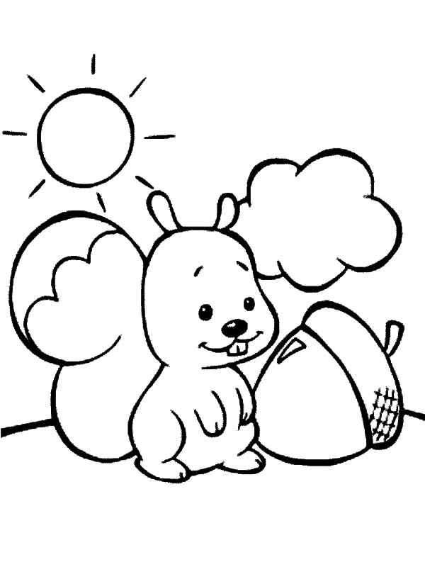 cute squirrel found acorn coloring pages