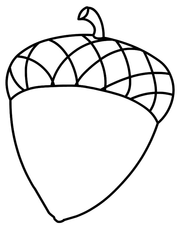 Acorn leaf coloring coloring pages