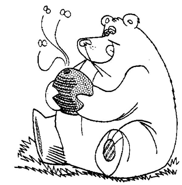honey coloring page - honey bear full stomach with honey coloring pages honey