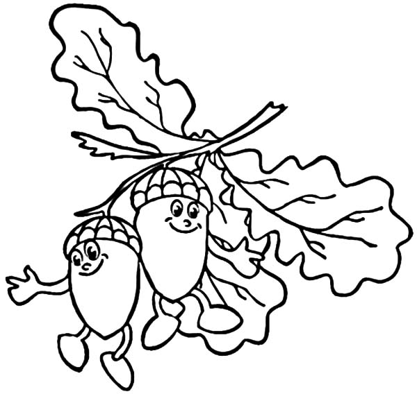Acorn With Oak Leaf Coloring Pages Coloring Sky