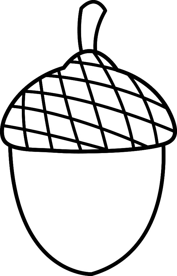 summer acorn coloring pages