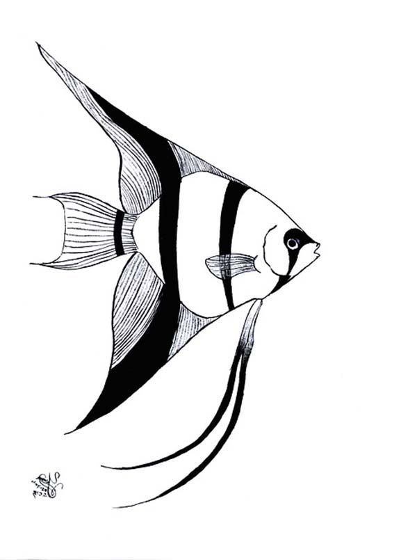 Angel Fish Image Coloring Page Coloring Sky