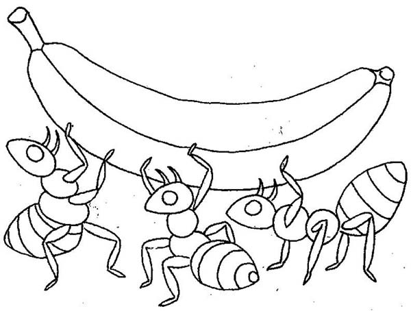 ant together lifting banana coloring page