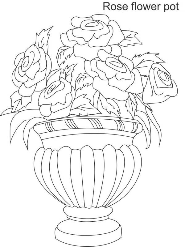 Beautiful Roses Flower Vase Coloring Page Coloring Sky