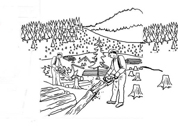 Cutting Forest Tree Coloring Page Coloring Sky