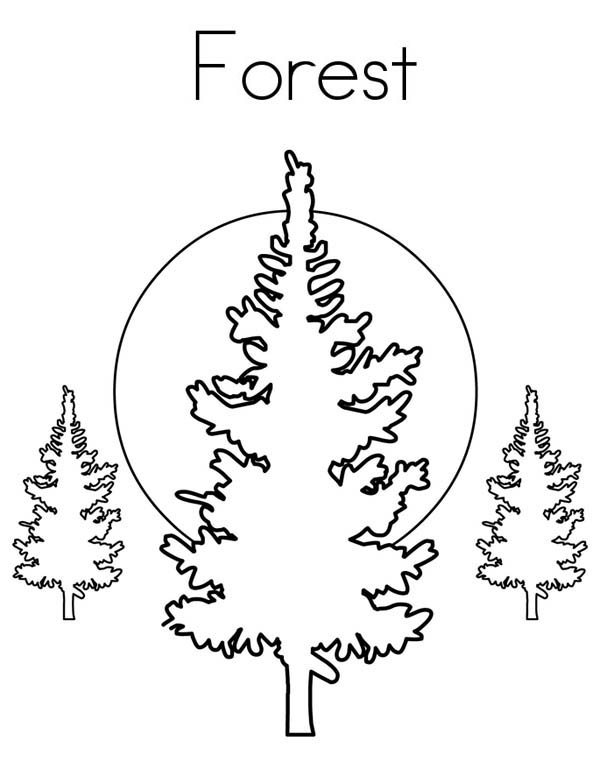 Forest, : F is for Forest Coloring Page