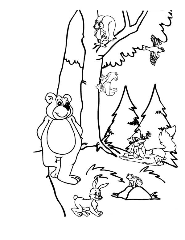 Forest Animals Picture Coloring Page for Kids | Coloring Sky