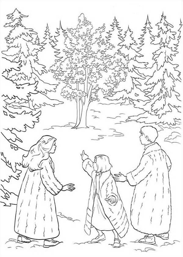 Forest, : Forest in Narnia Coloring Page