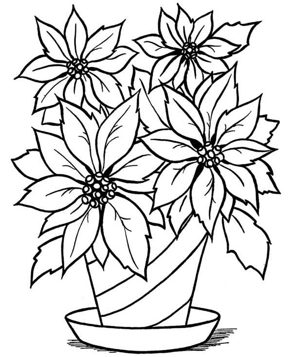 Fresh Flower Vase Coloring Page Coloring Sky