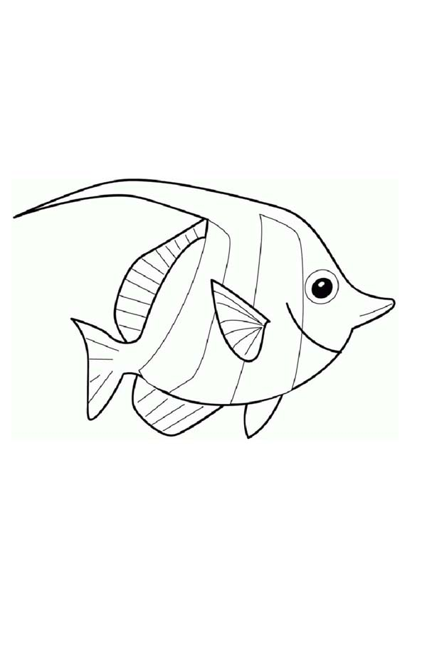 How To Draw Angel Fish Coloring Page : Coloring Sky