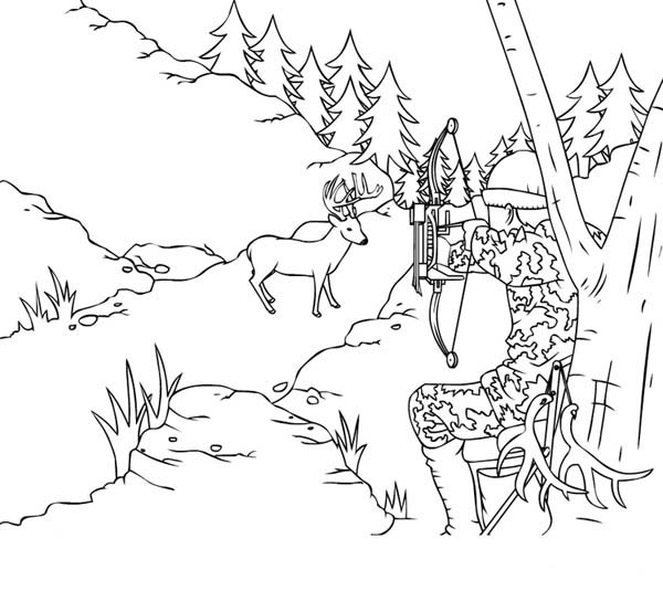 Hunter Shot A Deer With Arrow Coloring Page Coloring Sky