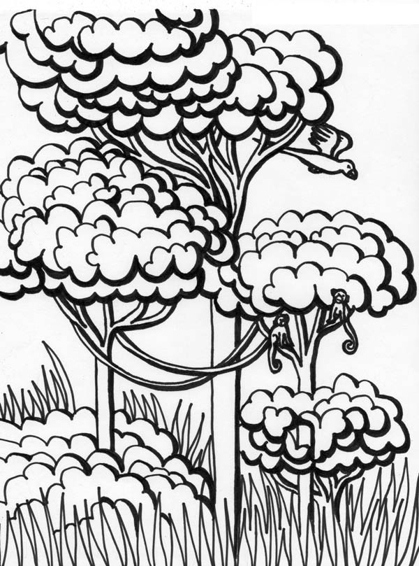 Forest, : Kid Drawing a Forest Coloring Page
