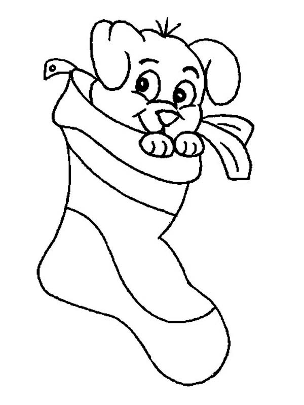 Christmas, : A Sweet Tiny Puppy on Christmas Stocking on Christmas Coloring Page