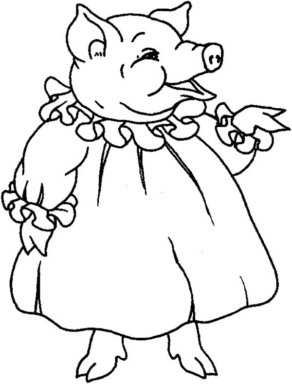 Pig, : Beautiful Pig Coloring Page