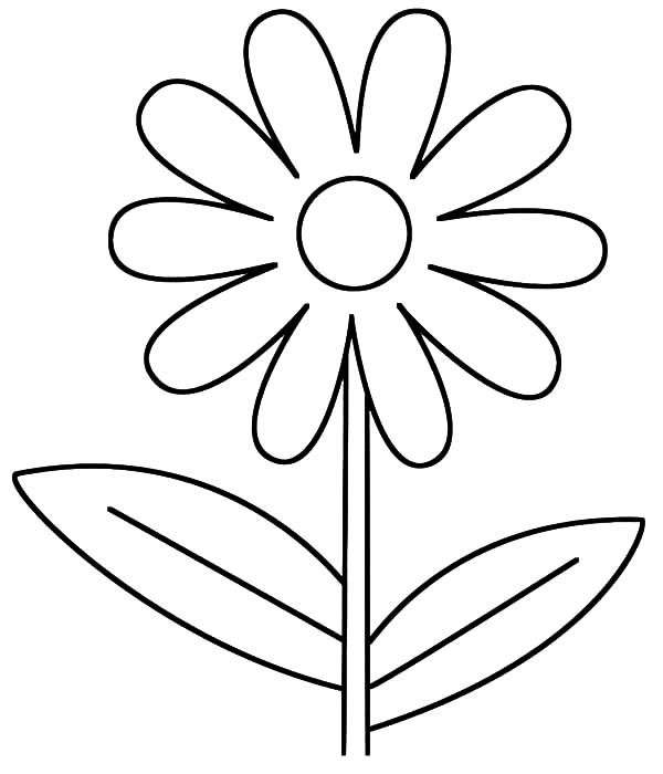 Plants, : Beautiful Plants Coloring Page