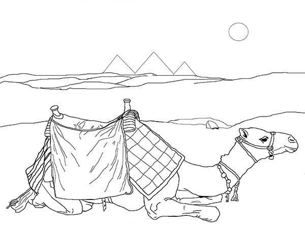 Pyramid, : Camel and Pyramid Coloring Page