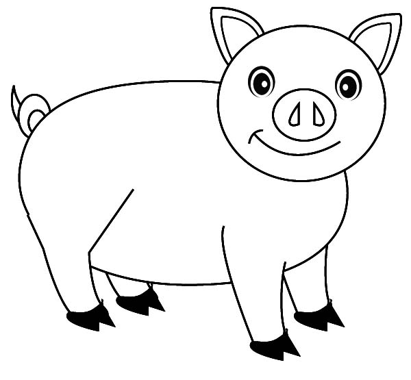 Pig, : Curious Pig Coloring Page