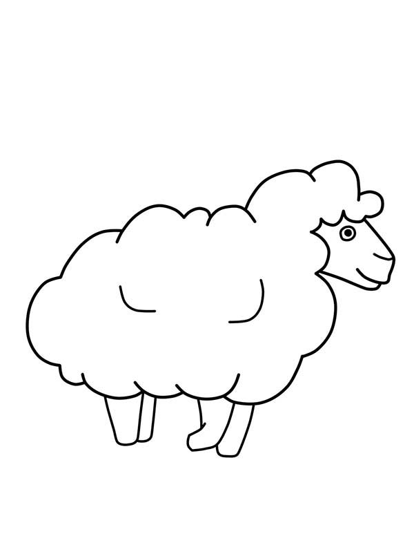 Sheep, : Drawing Sheep Outline Coloring Page