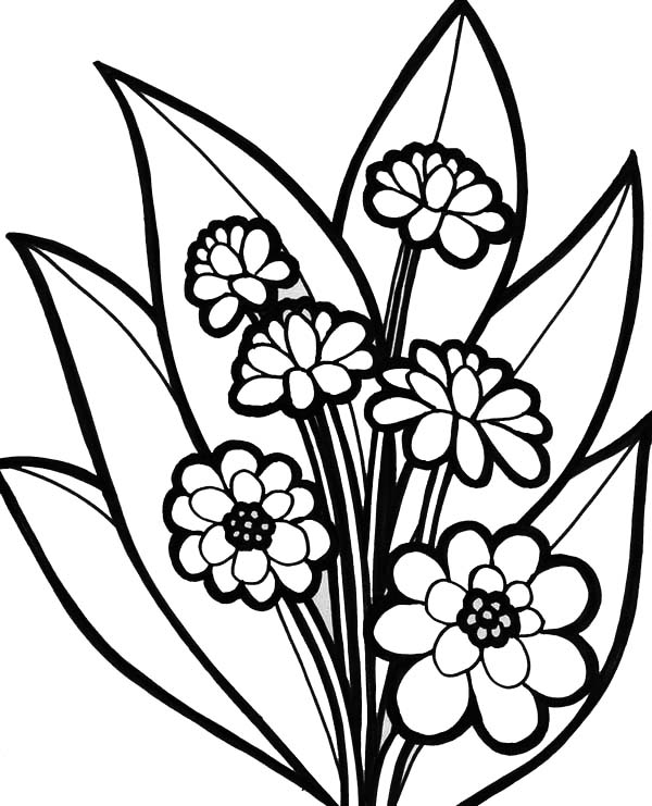 Flower Plants in Blossom Coloring Page | Coloring Sky